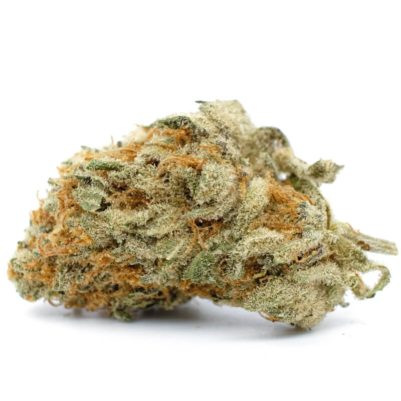 Buy Chocolate OG Online Chocolate og kush strain Chocolate og kush Order weed online 420 dispensary near me