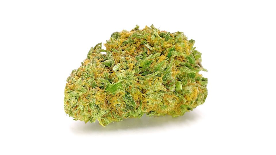 Juicy fruit strain