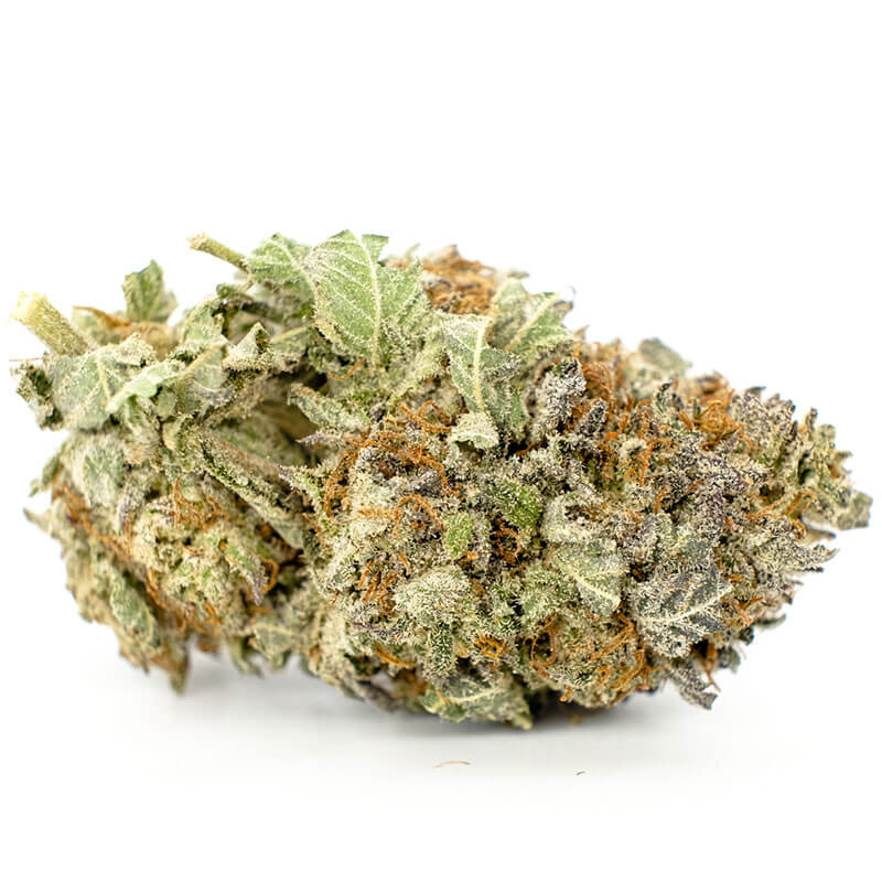 Buy Granddaddy Purple online Grand daddy purple allbud Grand daddy purple autoflower Grand daddy purple bud Order Weed online